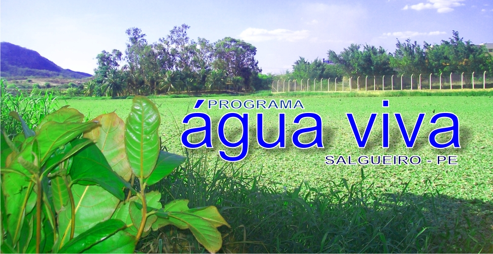 marca-projeto-agua-viva